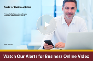 Interactive Video Player on alerts for business online banking